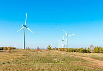 阿米巴組織劃分--責任細化更能激發企業能量
